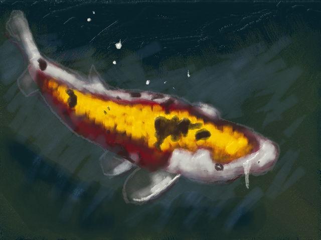 新絵心教室 レッスン6:鯉
